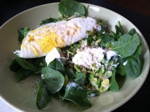 Saturday_lunch_salad_egg